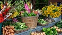 2004-08-07 - Cutchogue - Krupski Farms - Road Side Shop